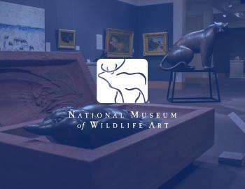 Jackson Hole Museum of Wildlife Art