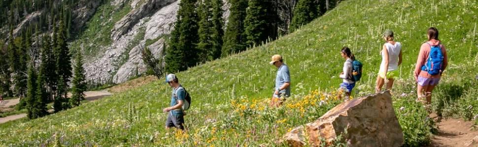 Hiking Guide to Jackson Hole