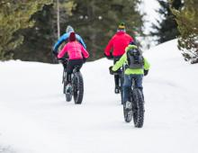 Fat Biking In Jackson Hole