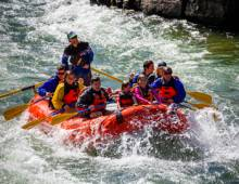 Local Activities to Elevate Your Jackson Hole Experience